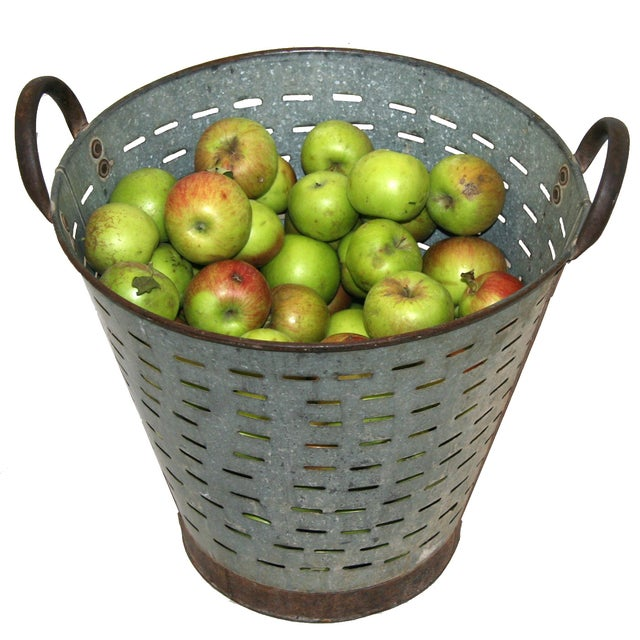 Vintage Olive/Harvest Bucket - Image 2 of 2