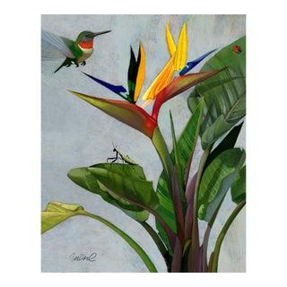 Premium Giclee Print of Bird of Paradise