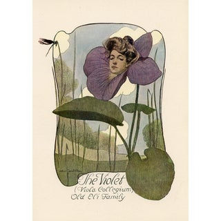 1904 'In Love's Garden - The Violet' Print