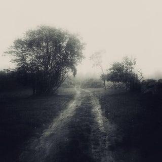 Road Home by Joan Kocak