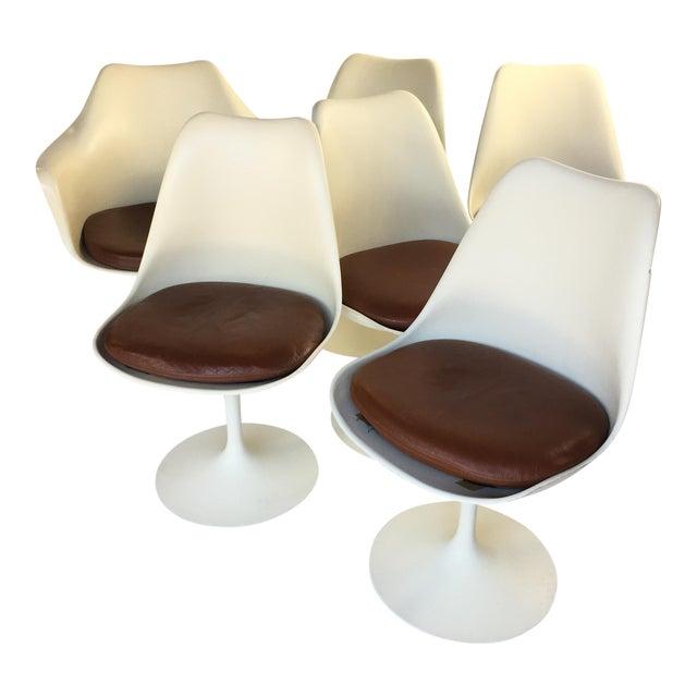 Eero Saarinen Leather Tulip Chairs - Set of 6 - Image 1 of 9