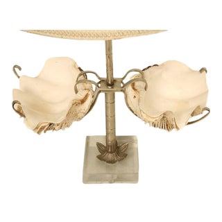 Mid-Century Modern Clam Specimen Lamp