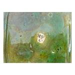 Image of Vintage George Jones Majolica Box & Plate Set