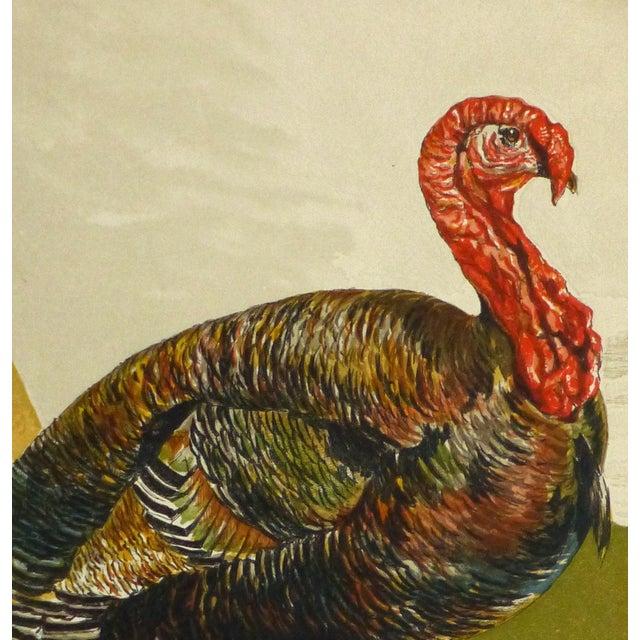 Image of English Engraving, Turkey, 1873