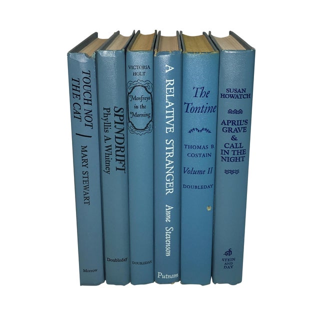 Vintage Display Books in Blues - Set of 6 - Image 1 of 3