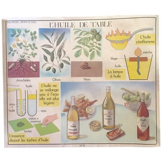 Vintage French School Noble Oils Poster