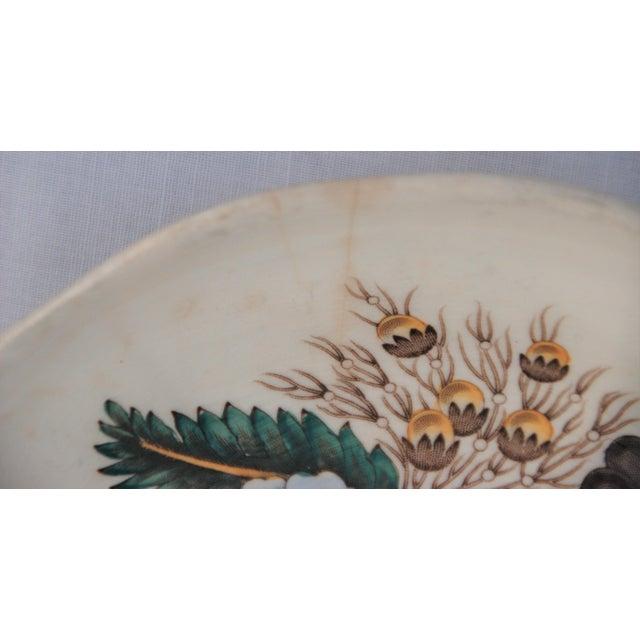 Vintage Spode Reynolds Pattern Saucer - Image 4 of 8