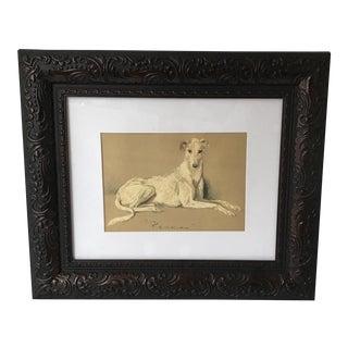 Walnut Framed Greyhound Print