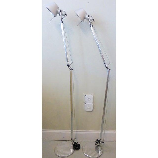 Image of Artemide Tolomeo Floor Lamps - A Pair