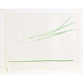 """""""Leek"""" by Gregoire Muller"""