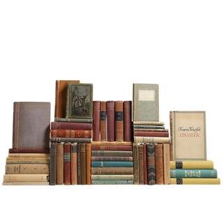 Vintage Earthtone German Books - Set of 50