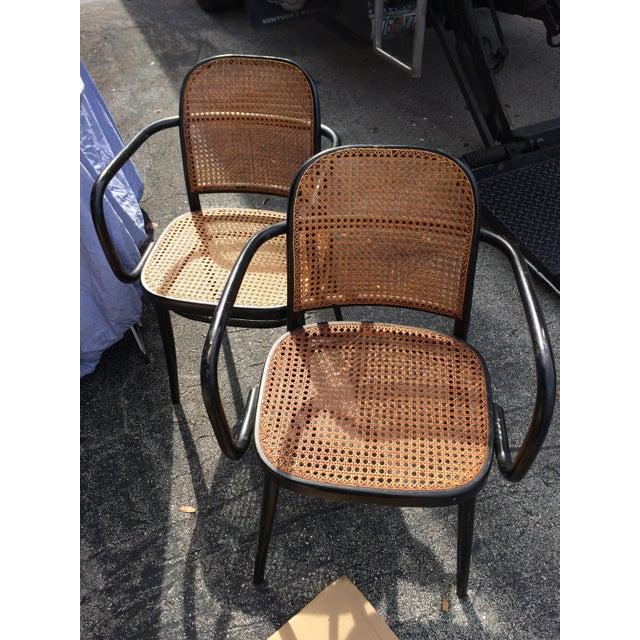 "Image of Josef Hoffman Bentwood & Cane ""Prague"" Chairs - Set of 5"