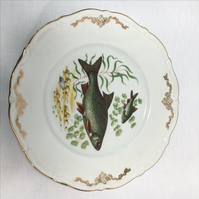 Image of Bavarian Winterling China Fish Pattern Plates - 7