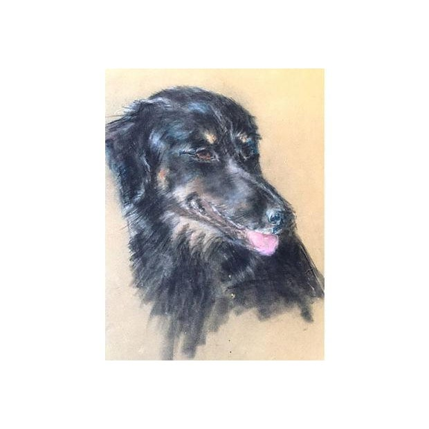 Mid Century Vintage Portait of a Dog in Pastel - Image 2 of 4