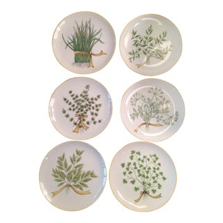 Herb Bouquet Plates - Set of 6
