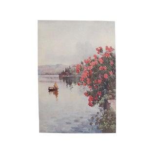 1905 Ella du Cane Print, Oleanders, Lago di Como