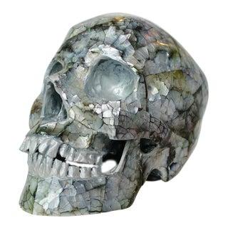 Unique Decorative Skull