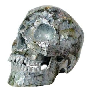 Unique Decorative Skull