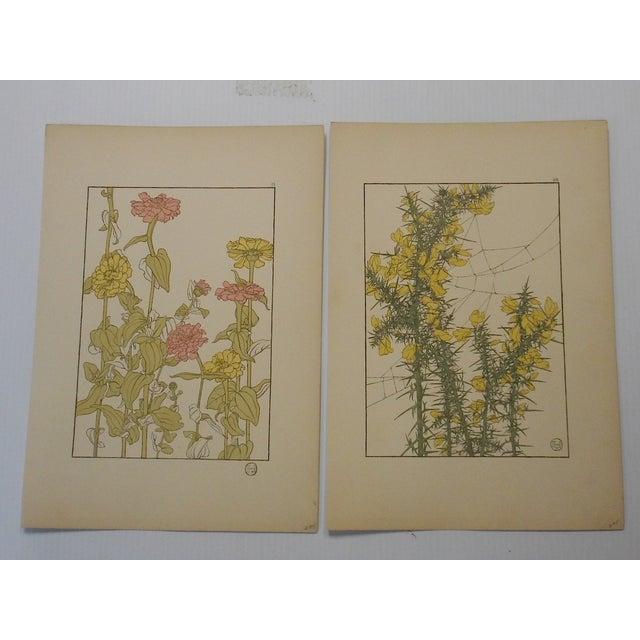 Art Nouveau Botanicals Prints - Pair - Image 2 of 4