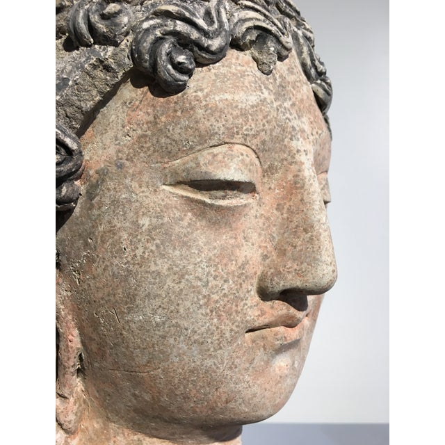 Gandharan Terracotta Head of a Bodhisattva, 3rd - 5th century - Image 7 of 10