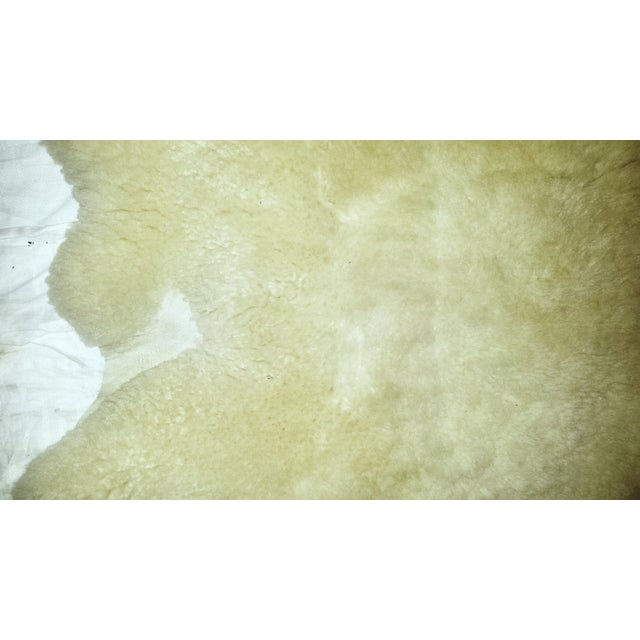 Vintage New Zealand Sheepskin Rug or Throw - Image 3 of 5