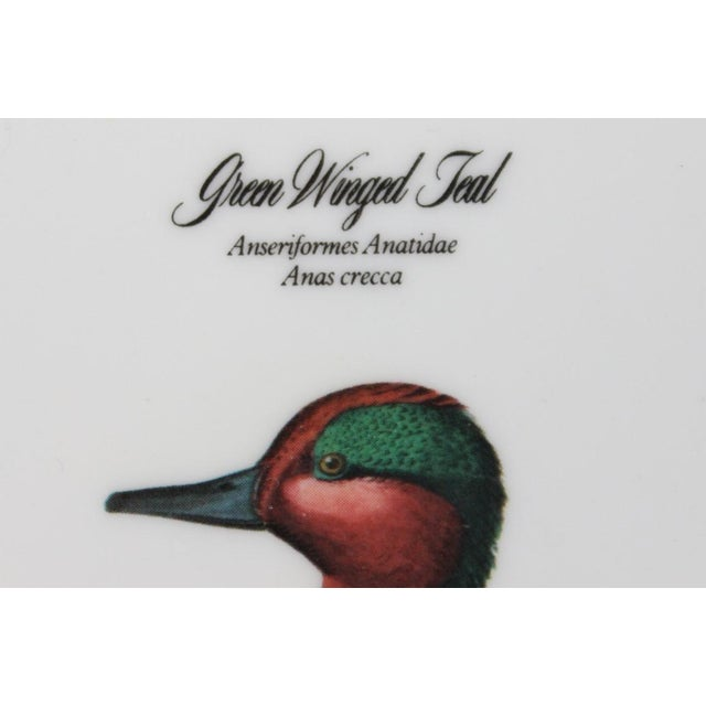 "John James Audubon ""Green Winged Teal"" Coasters - Set of 4 - Image 7 of 7"