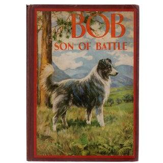 """1898 """"Bob: Son of Battle"""" Book"""