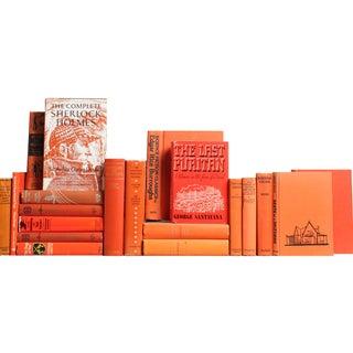 Vintage Tangerine Classic Books - Set of 20