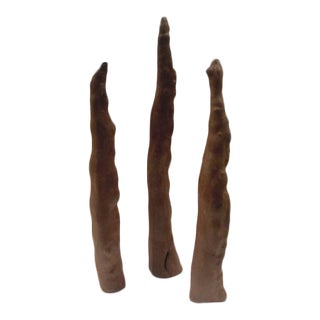 Vintage Cypress Knee Root Sculptures - Set of 3