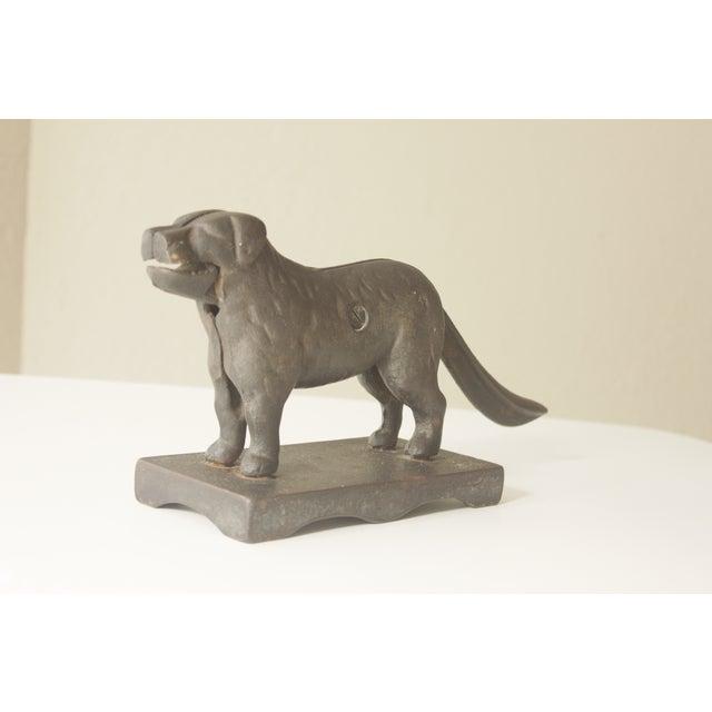 Image of Vintage Cast Iron Dog Nuckcracker