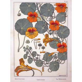 A Rare Set of 3 French Art Nouveau Chromolithographs of Nasturtiums & Sunflowers