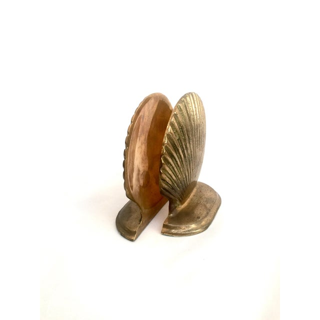 Brass Shell Bookends - Pair - Image 6 of 6