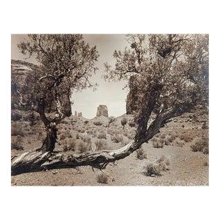 Lloyd M. Pyeatt Monument Valley Photograph
