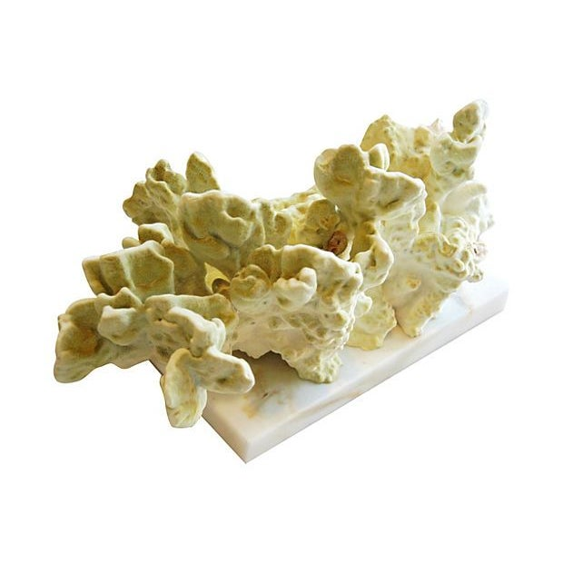 Natural Green Fire Coral on White Marble Slab - Image 2 of 7
