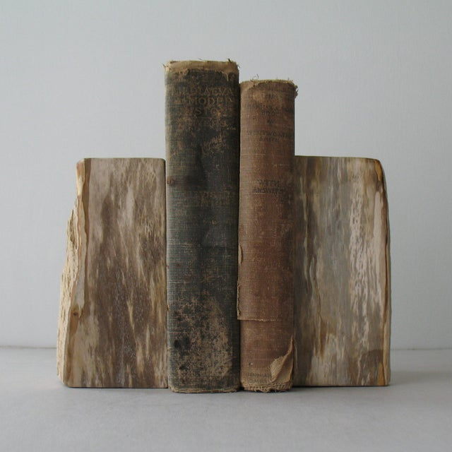 Petrified Wood Bookends - Pair - Image 7 of 9