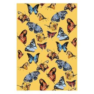 Voutsa Wallpaper - Butterflies on Pumpkin