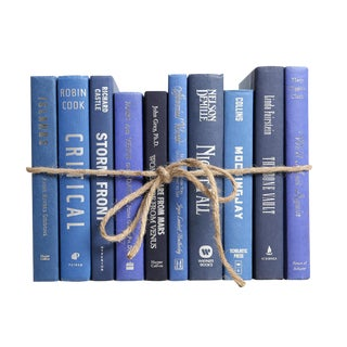 Modern Blue & Silver Books by the Foot