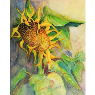 Sunflower Watercolor by Edith Craig