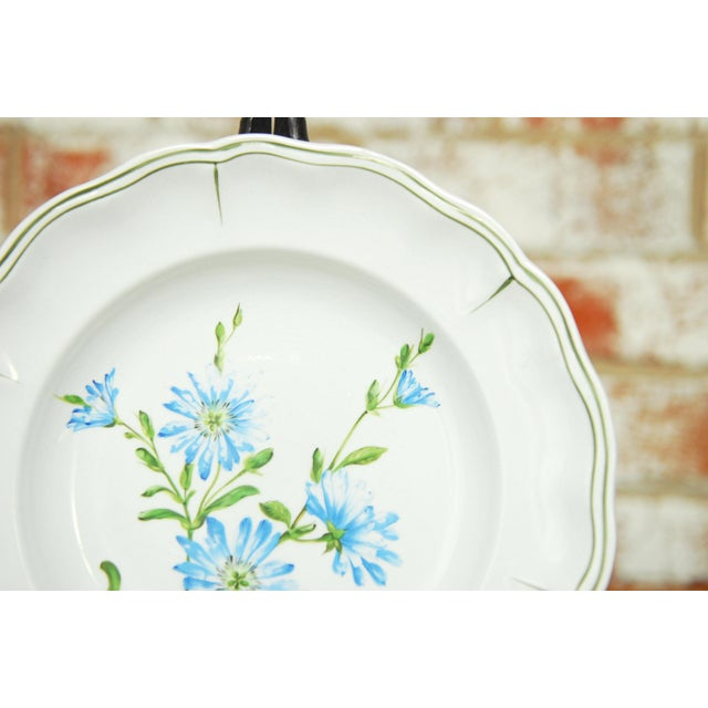 """Set of 66 French Luneville Hand-Painted Floral Dining Plates """"Rovina Epinal"""" - Image 8 of 11"""