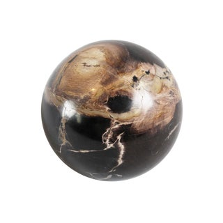 Petrified Wood Grain Sphere