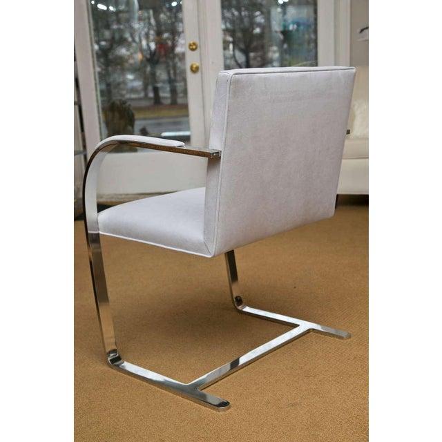 Set of 4 Vintage Ludwig Mies van der Rohe Brno Chairs - Image 4 of 7