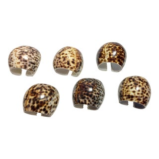 Vintage Tiger Cowrie Shell Napkin Rings - Set of 6