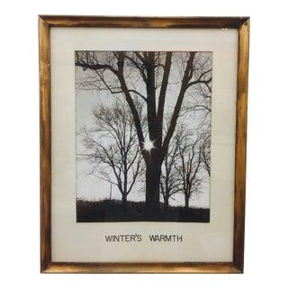 Vintage Giltwood Frame Photograph