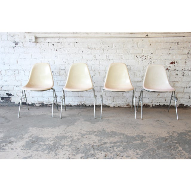 Charles Eames for Herman Miller DSS Stacking Chairs in Parchment - Set of 4 - Image 9 of 9