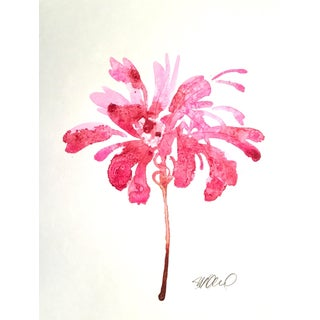Firecracker Watercolor