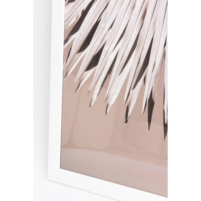 """""""Palm Helix"""" Diptych by Christine Ralphs - Image 4 of 4"""