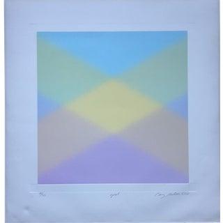 Barry Nelson 1978 Op-Art Etching