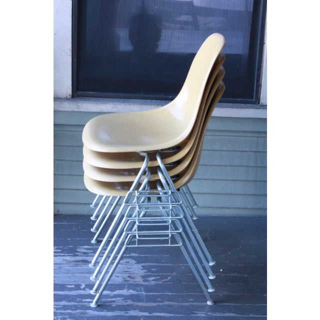 Vintage Yellow Eames Shell Chairs - Set of 4 - Image 7 of 10