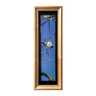 """Signs of Spring"" Archival Print in Handmade Frame"