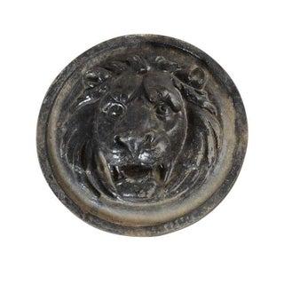 Cast-Iron Lion Head